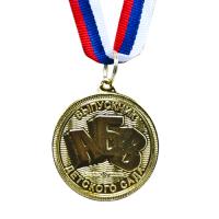Медаль выпускнику детского сада, лёгкая, лента триколор